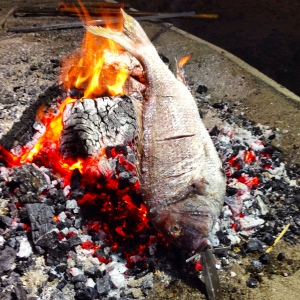 Pargos cooking on an open fire at Torre del Mar